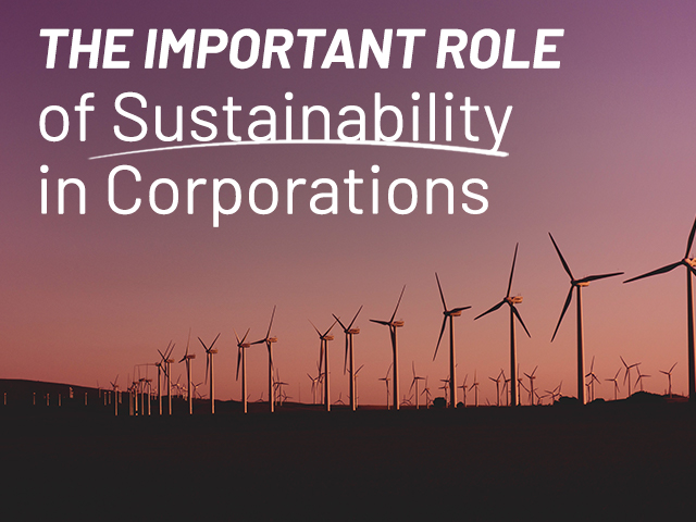 several windmills representing the importance of sustainability in corporations